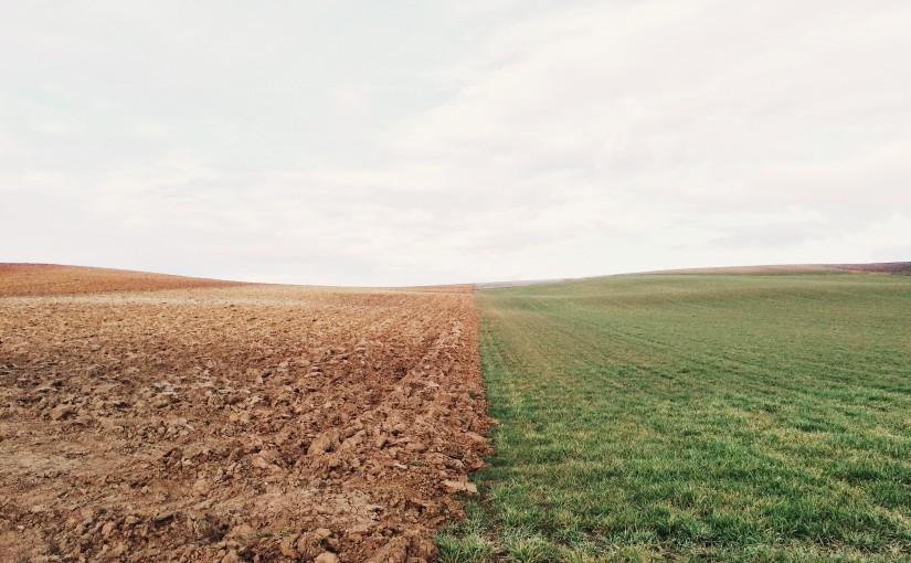 Вебинар «Организация работы управлений земельных ресурсов»