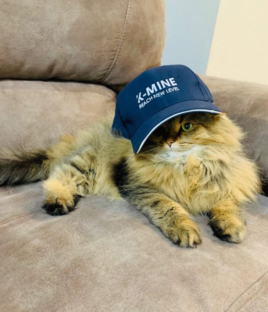 Cat_K_MINE